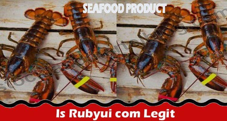 Is Rubyui Com Legit (July 2021) Let's Read Reviews Here!
